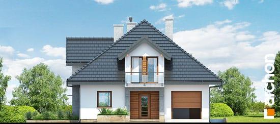 Dom-medzi-tymianom-n__264