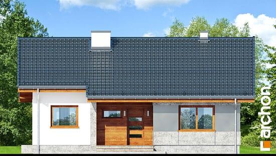 Dom-pod-lipou__264